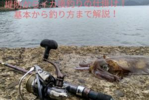 イカの堤防からの釣りの仕掛けに関する参考画像