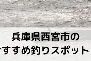兵庫県西宮市のおすすめ釣りスポットに関する参考画像