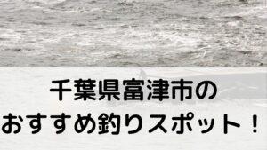 千葉県富津市のおすすめ釣りスポットに関する参考画像