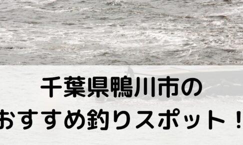 千葉県鴨川市のおすすめ釣りスポットに関する参考画像