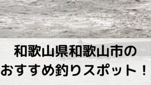 和歌山県和歌山市のおすすめ釣りスポットに関する参考画像