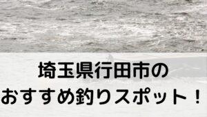 埼玉県行田市のおすすめ釣りスポットに関する参考画像