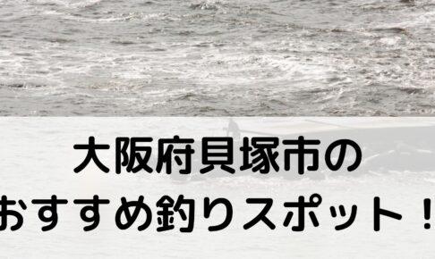 大阪府貝塚市のおすすめ釣りスポットに関する参考画像