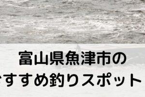 富山県魚津市のおすすめ釣りスポットに関する参考画像