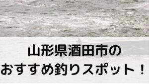 山形県酒田市のおすすめ釣りスポットに関する参考画像