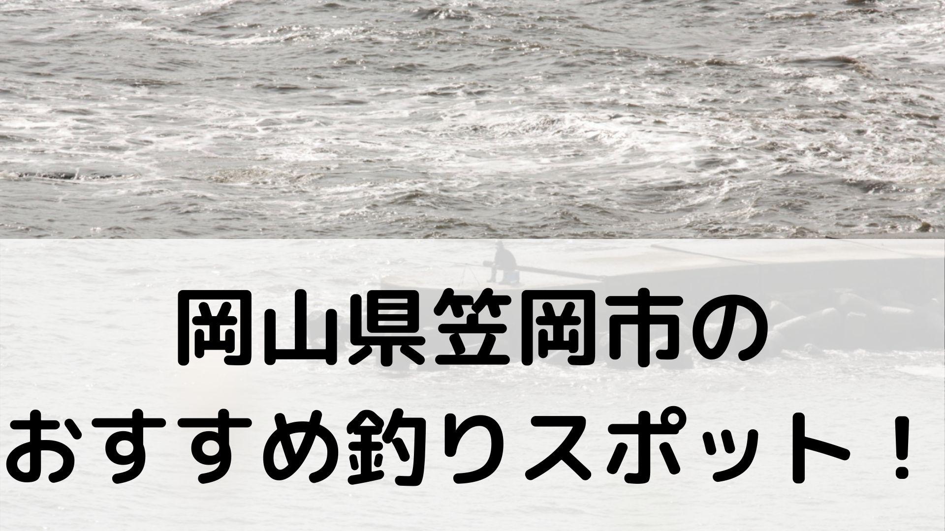 岡山県笠岡市のおすすめ釣りスポットに関する参考画像