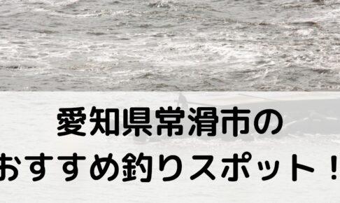 愛知県常滑市のおすすめ釣りスポットに関する参考画像