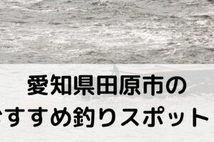 愛知県田原市のおすすめ釣りスポットに関する参考画像