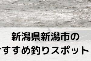 新潟県新潟市のおすすめ釣りスポットに関する参考画像
