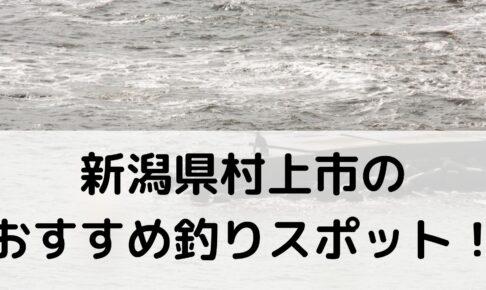 新潟県村上市のおすすめ釣りスポットに関する参考画像
