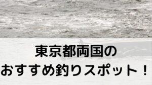 東京都両国のおすすめ釣りスポットに関する参考画像