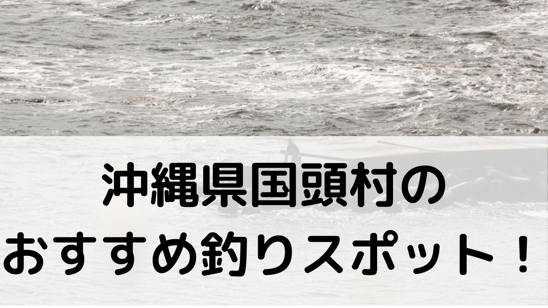 沖縄県国頭村のおすすめ釣りスポットに関する参考画像