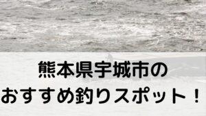 熊本県宇城市のおすすめ釣りスポットに関する参考画像