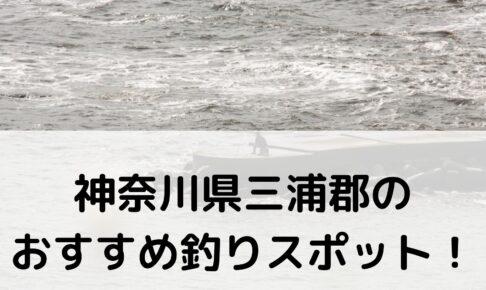 神奈川県三浦郡のおすすめ釣りスポットに関する参考画像