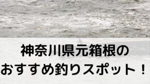 神奈川県元箱根のおすすめ釣りスポットに関する参考画像