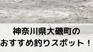 神奈川県大磯町のおすすめ釣りスポットに関する参考画像
