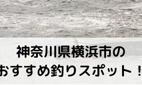 神奈川県横浜市のおすすめ釣りスポットに関する参考画像