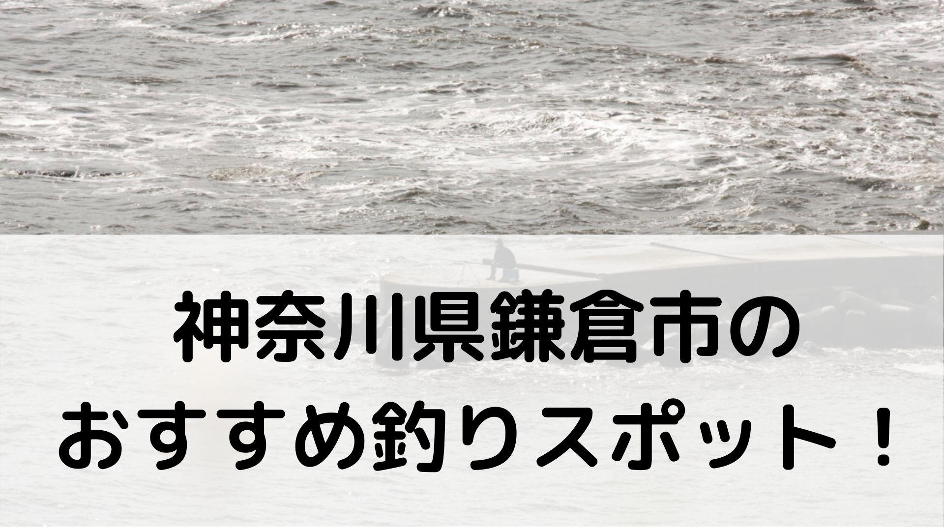 神奈川県鎌倉市のおすすめ釣りスポットに関する参考画像