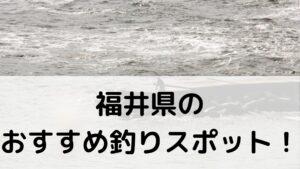 福井県 のおすすめ釣りスポットに関する参考画像