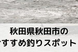 秋田県秋田市のおすすめ釣りスポットに関する参考画像