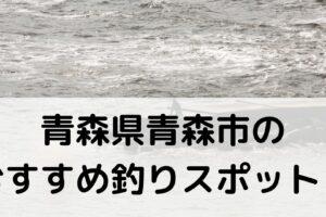 青森県青森市のおすすめ釣りスポットに関する参考画像