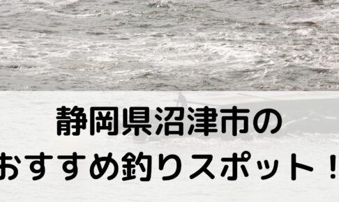 静岡県沼津市のおすすめ釣りスポットに関する参考画像