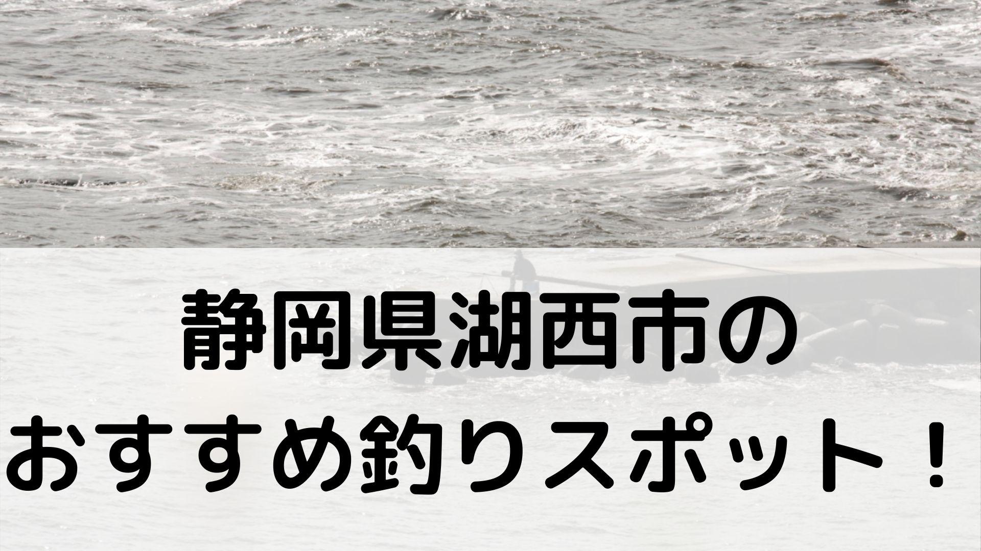 静岡県湖西市のおすすめ釣りスポットに関する参考画像