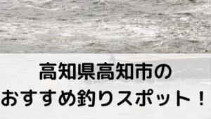 高知県高知市のおすすめ釣りスポットに関する参考画像