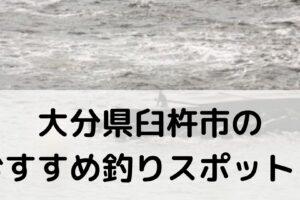 大分県臼杵市のおすすめ釣りスポットに関する参考画像