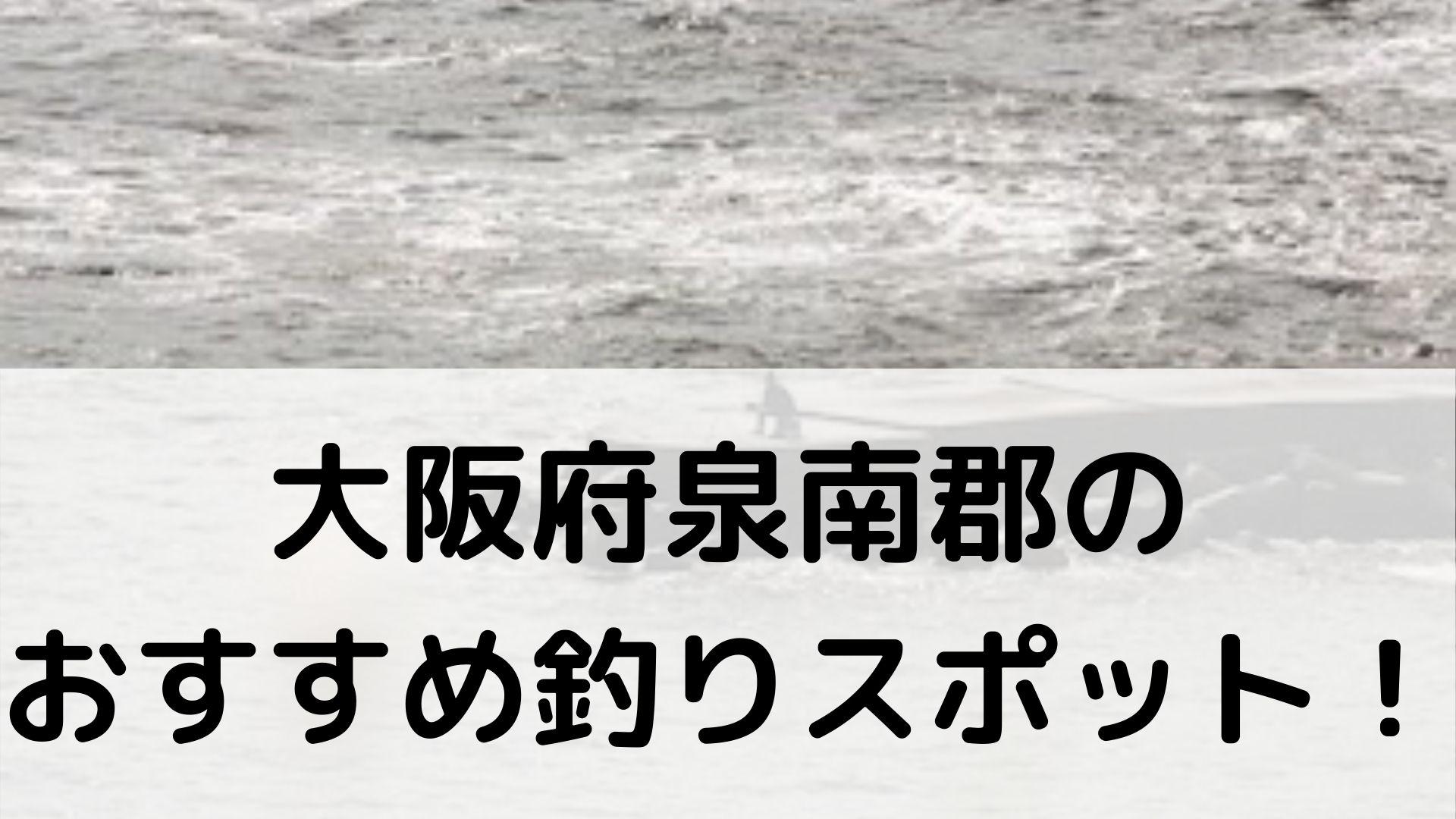 大阪府泉南群のおすすめ釣りスポットに関する参考画像
