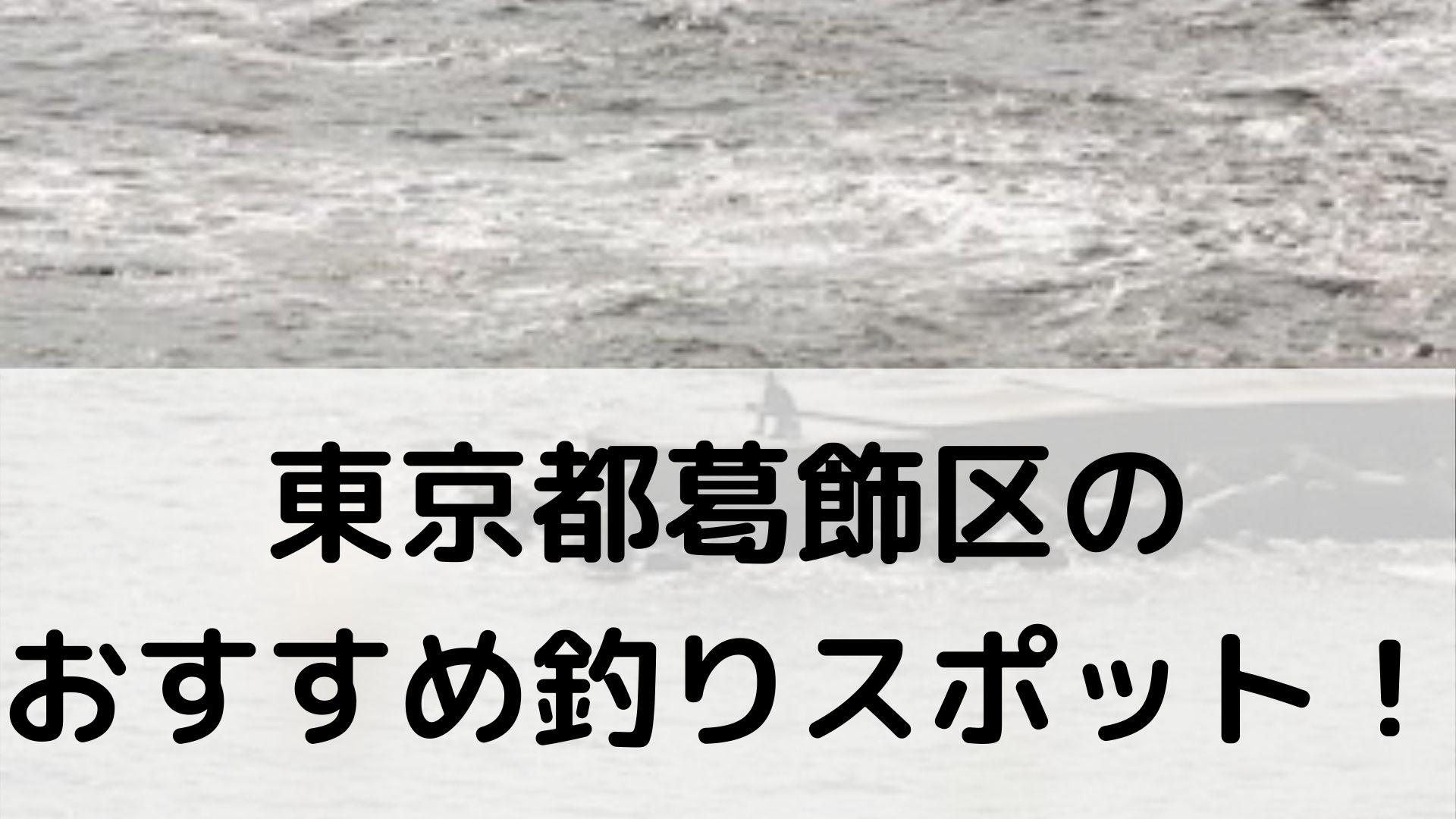 東京都葛飾区のおすすめ釣りスポットに関する参考画像