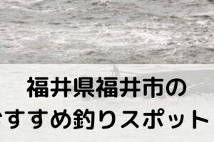 福井県福井市のおすすめ釣りスポットに関する参考画像