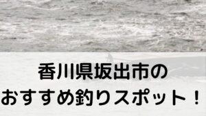 香川県坂出市のおすすめ釣りスポットに関する参考画像